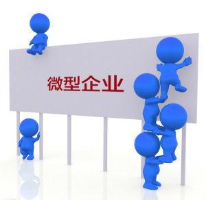 易财务易工商企业商城-鼓励类微型企业设立