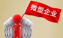 微型企业的创业补助申请要求-重庆微型企业代办
